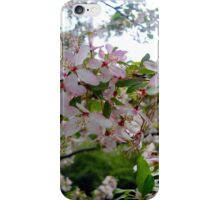 Pink and White Blossoms #2 iPhone Case/Skin
