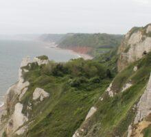 Beer Devon coastline Sticker