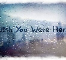 Wish You Were Here by Sheiswinter
