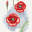 Remember the Red Poppies by Rasendyll
