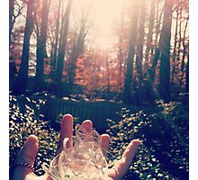 broken glass; tiny shards of pain Photographic Print