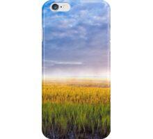 Lazaretto Marsh Panorama - Georgia Coastal Landscape iPhone Case/Skin