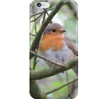 Red Breasted Angel iPhone Case/Skin
