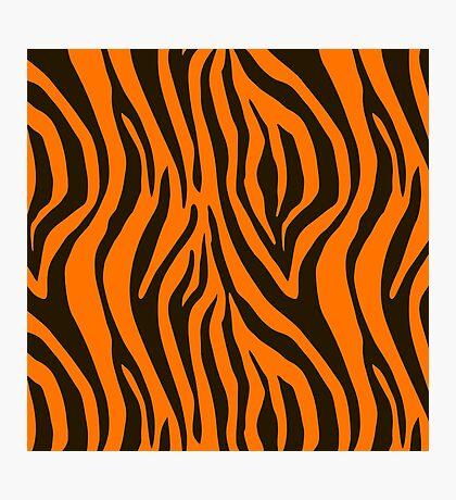 Orange Zebra Animal Print Pattern Photographic Print