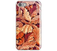 Russet Shades of Autumn iPhone Case/Skin