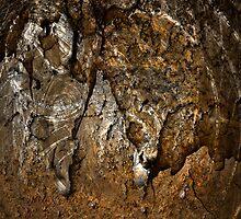 Rusty Crusty by Shane Viper