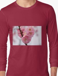 Close up of Cherry Blossoms in a Japanese Garden, Tokyo, Japan Long Sleeve T-Shirt