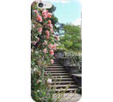 Wonderfully Welsh Floral Steps iPhone Case/Skin