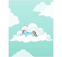 Sleepy Pony Photographic Print
