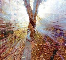 Contemporeality by HyperLyght