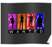 Wanted by Interpol Poster