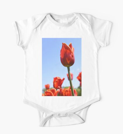 tulip 2 One Piece - Short Sleeve