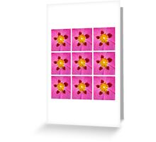 Pink3 Greeting Card