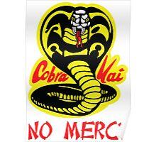 Cobra Kai Dojo Poster