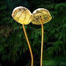 Two Little Shrooms by Susie Peek