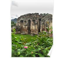 Ruins and Nature in Guatemala , 2009 Poster
