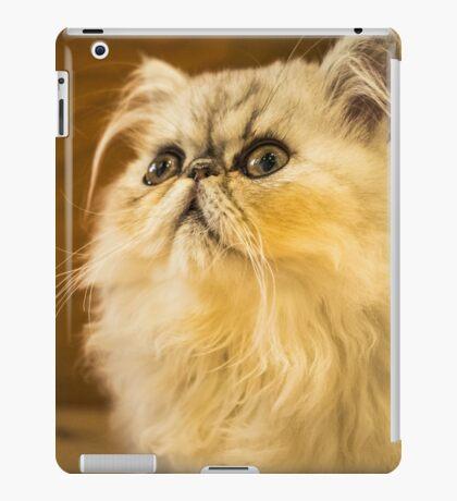 Grumpy Cat is Grumpy iPad Case/Skin