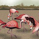 Flamingos by Raewyn Haughton