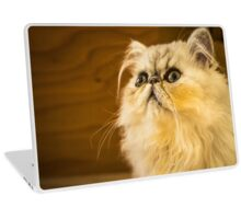 Grumpy Cat is Grumpy Laptop Skin