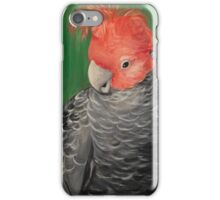 Coy Boy iPhone Case/Skin