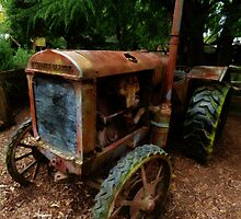 The Old Workhorse  by PictureNZ