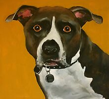 Staffordshire Bull Terrier by Caroline  Peacock