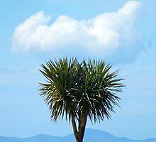 Costa del Abermaw by Yampimon