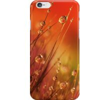 Water Drops on Blades of Grass Colorful Nature iPhone Case/Skin