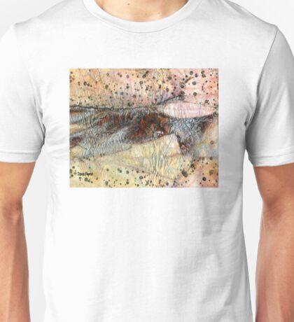 Sedimentary Rock Unisex T-Shirt