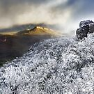 Mount William Snow (Panorama) by hangingpixels
