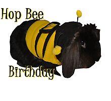 Hop Bee Birthday Photographic Print