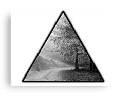 black&white forest Canvas Print