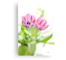Pink Tulips Drenched In Light Canvas Print