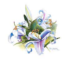 Casa Blanca Watercolor #2 Photographic Print