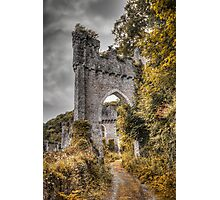 Gwrych Castle Collection 30 Photographic Print