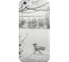 Loneliness of the Long Distance Trolley iPhone Case/Skin
