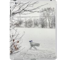 Loneliness of the Long Distance Trolley iPad Case/Skin