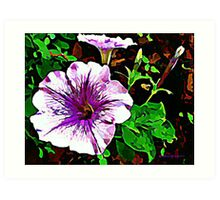Purple Petunia Watercolor Art Print