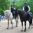 Mounted Police during Change of guards by santoshputhran