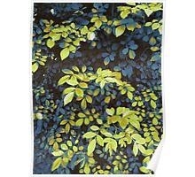 Foliage Hues - Dark Blue And Green Poster