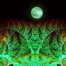 Strange Moon by James Brotherton