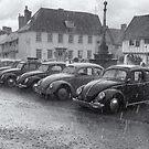 VW Bugs in the Rain by DaveTurner