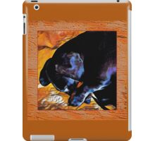 dachshund sleeping iPad Case/Skin