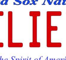 Red Sox Fan License Plate BELIEVE Sticker