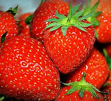 Fresh Strawberries by lisa1970