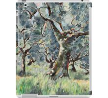 In the Umbrian Olive Grove iPad Case/Skin