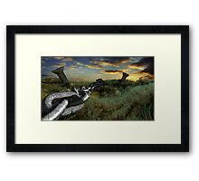 Country File Framed Print