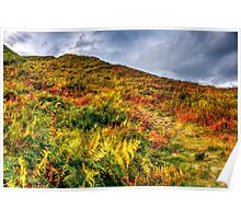 Autumn in Lake District Poster
