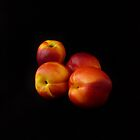 Sweet Summer Nectarines  by Barbara Morrison