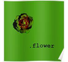 .flower Poster